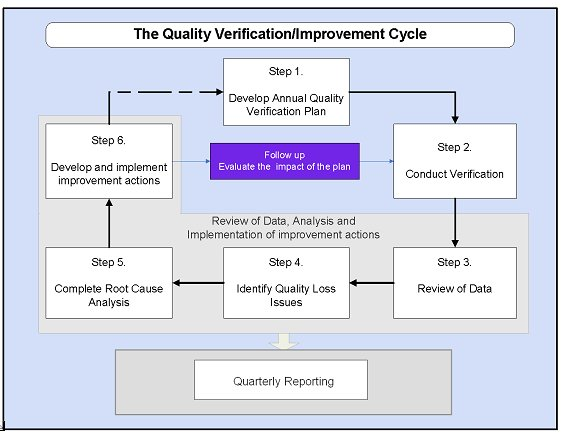 Appendix B: Quality Verification And Improvement Cycle