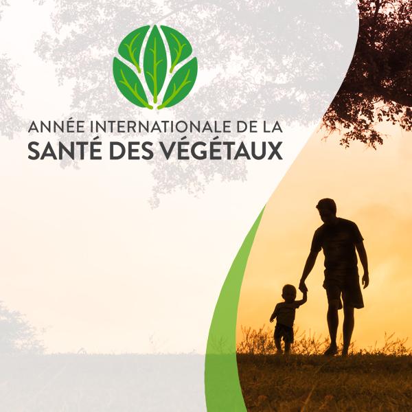 Sensibilisation sur la santé des végétaux au Canada et dans le monde