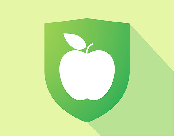 An apple over a green background