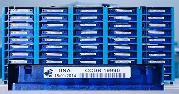 Stacked Deoxyribonucleic acid trays with barcode stickers labelling each separate species