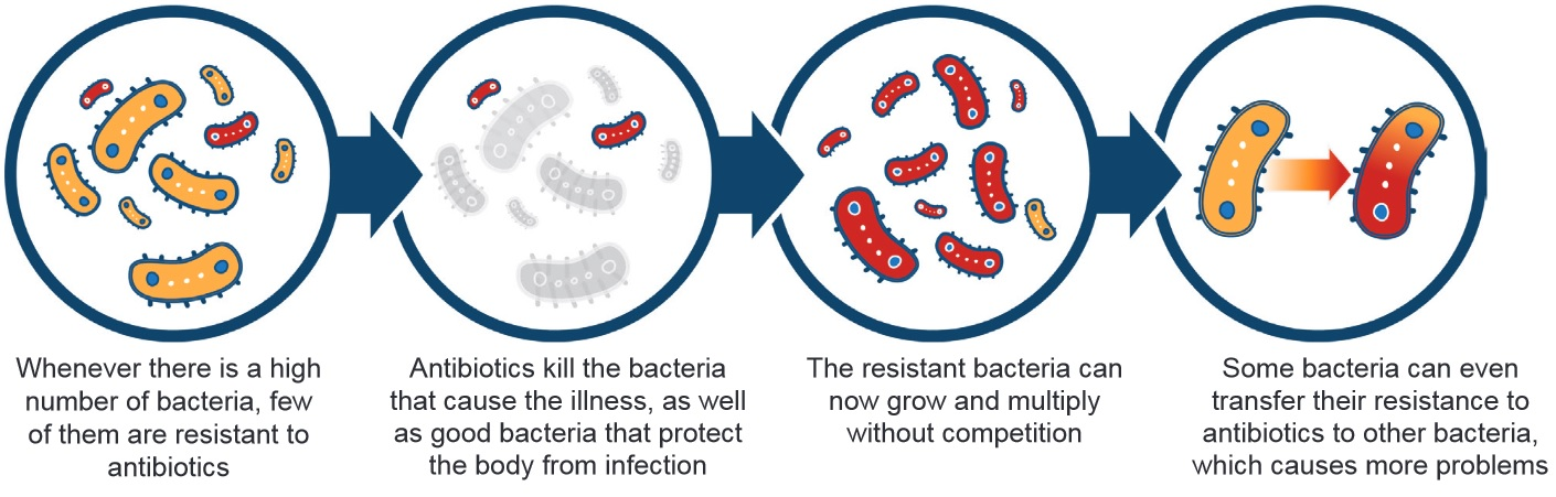 Antimicrobial resistance. Description follows.
