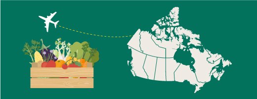 Rules, licences, fees, certificates and notices for exporting food from Canada to another country.