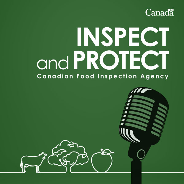 Coming soon: Inspect and Protect