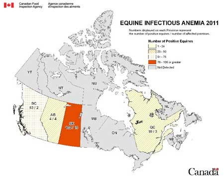 map - equine infectious anemia - Canada