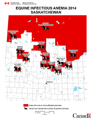 Map - Equine Infectious Anemia 2014, Saskatchewan. Description follows.