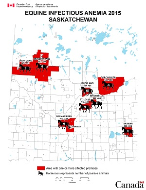 Map - Equine Infectious Anemia 2015, Saskatchewan. Description follows.