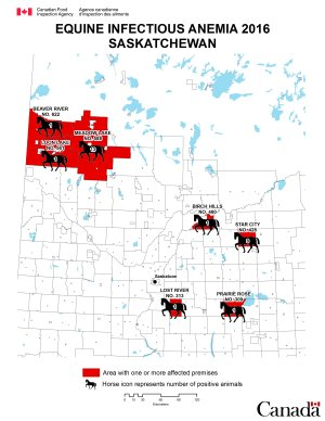Map - Equine Infectious Anemia 2016, Saskatchewan. Description follows.