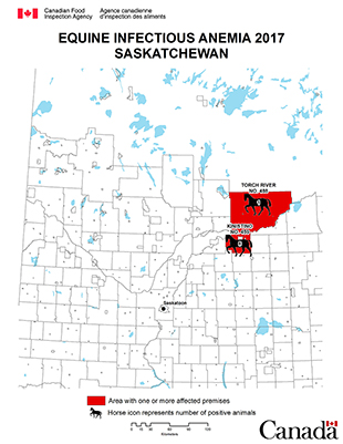 Map - Equine Infectious Anemia 2017, Saskatchewan. Description follows.
