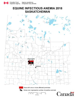 Map - Equine Infectious Anemia 2018, Saskatchewan. Description follows.