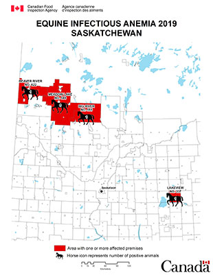 Map - Equine Infectious Anemia 2019, Saskatchewan. Description follows.