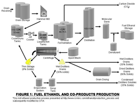 Fuel Ethanol and Co-Products Production
