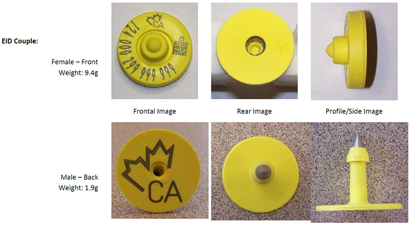 Picture - CFIA code: BOV-02-02. Description follows.