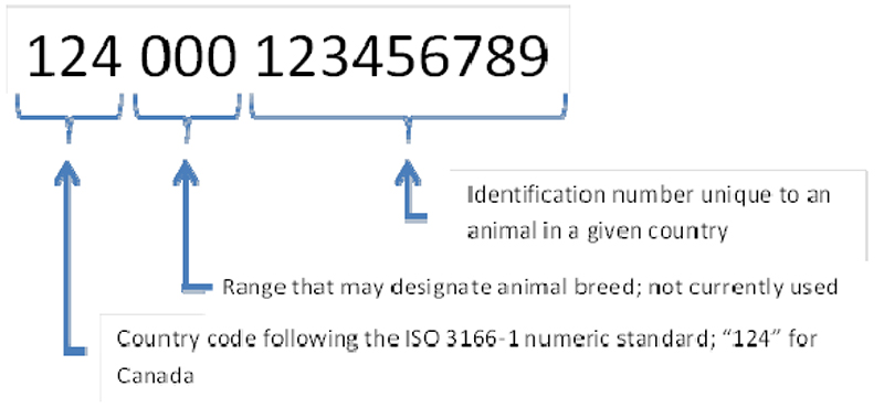 Picture - Figure 3: ISO 11784 standard number format. Description follows.