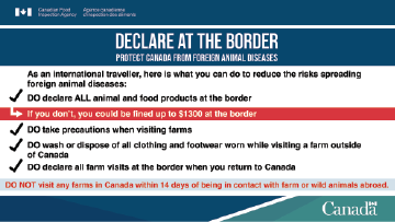 Pamphlet: Traveller's guide to protect Canada from foreign animal diseases