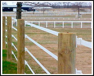 a picture of a horse paddock enclosed by a 5 strand electric tape fence. The strands are attached to large wooden posts using insulators to prevent grounding.