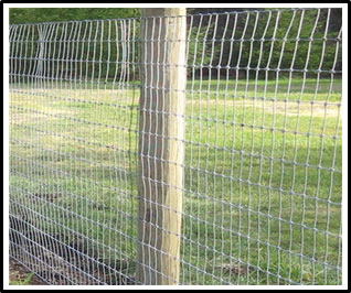 a picture of a fence made using galavanized metal mesh fence material attached to wooden posts.