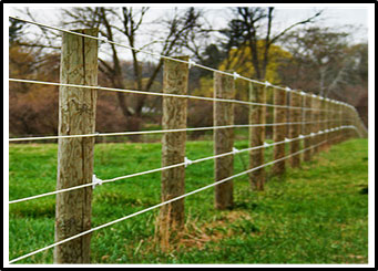 A picture of a horse fence made using metal strand wire coated in a polymer attached to wooden posts