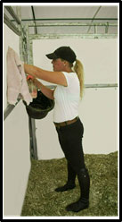 A picture of a woman cleaning and disinfecting the plastic panels of a horse stall