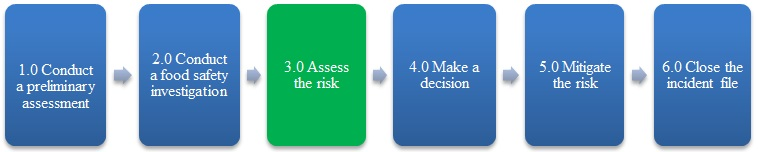 Figure 1 – The third step, assess the risk, is highlighted. Description follows.