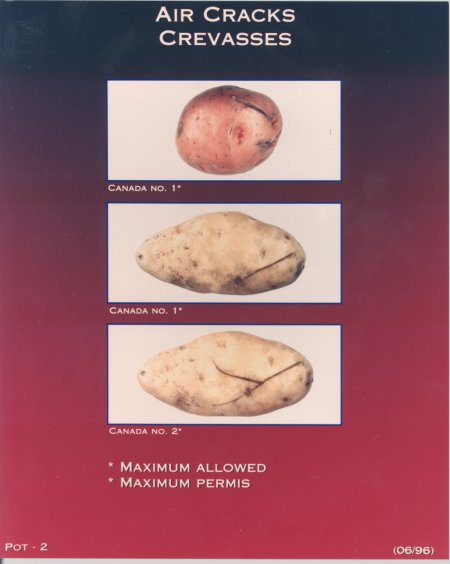 Air Cracks – maximum allowed for Canada number one and Canada number two potatoes. Description follows.