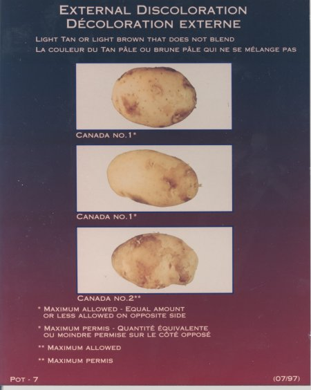 External discolouration, light tan or light brown that does not blend – maximum allowed for Canada number one and Canada number two potatoes