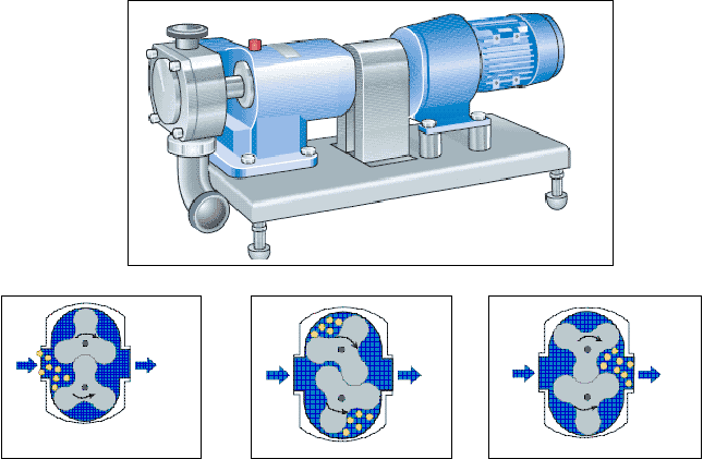 Figure 6: Positive-displacement Pump (rotor type). Description follows.