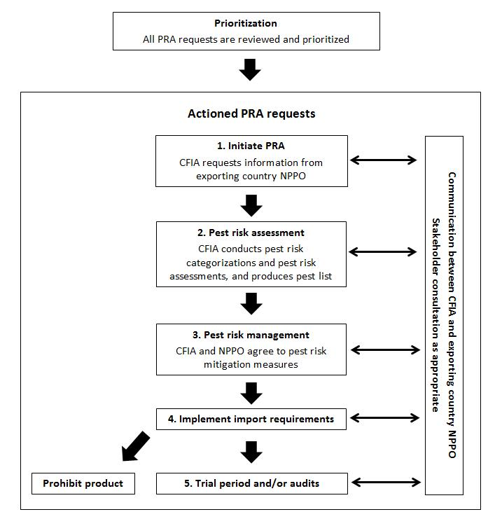 Flowchart - Actioned Pest Risk Analysis requests.