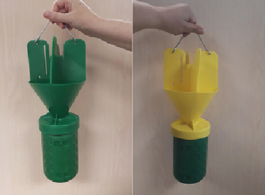 Figure 1. Japanese Beetle Trap