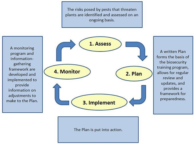 Figure 2: The biosecurity planning cycle. Description follows.