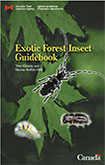 Exotic Forest Insect