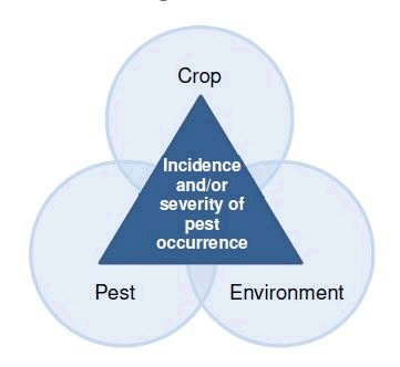 Figure 1: The Plant Pest Triangle. Description follows.