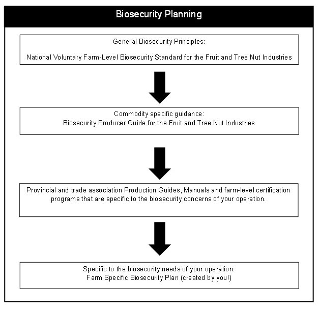 Flow chart of how the documents and tools referenced in this standard work together to help you develop your biosecurity plan. Description follows.