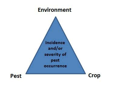Picture - The Plant Pest Triangle