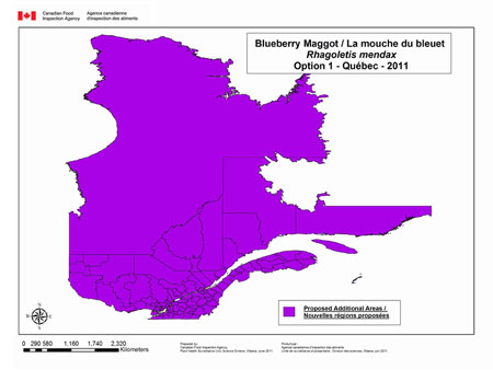This map depicts the entire province of Quebec as being regulated for blueberry maggot under option 1 for Québec.