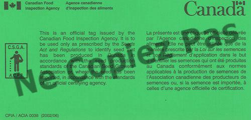 700 graines-Paquet économique Herbe-Thym d'été français