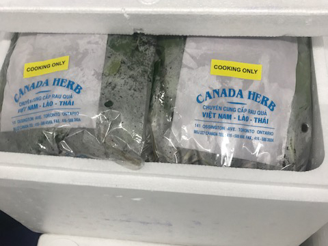 Canada Herb brand culantro (Ngò Gai) recalled due to Salmonella - Updated Food Recall Warning
