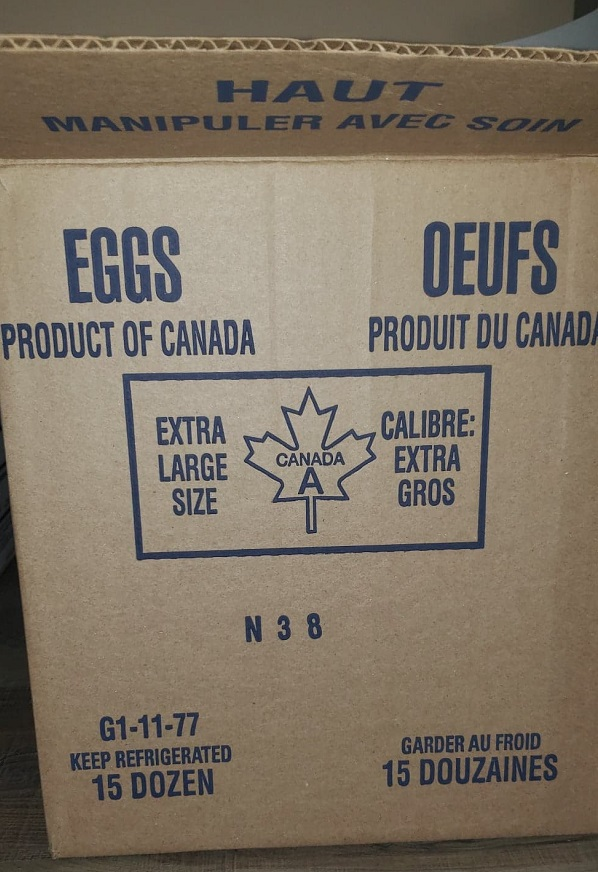 Eggs N38 – Extra Large Size Eggs (15 Dozen)
